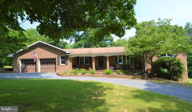 258 Rainbow Hill Lane, NEW MARKET, VA 22844 (#1001823744) :: Remax Preferred | Scott Kompa Group