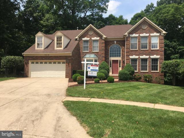7219 Osprey Drive, ROCKVILLE, MD 20855 (#1001832678) :: Colgan Real Estate