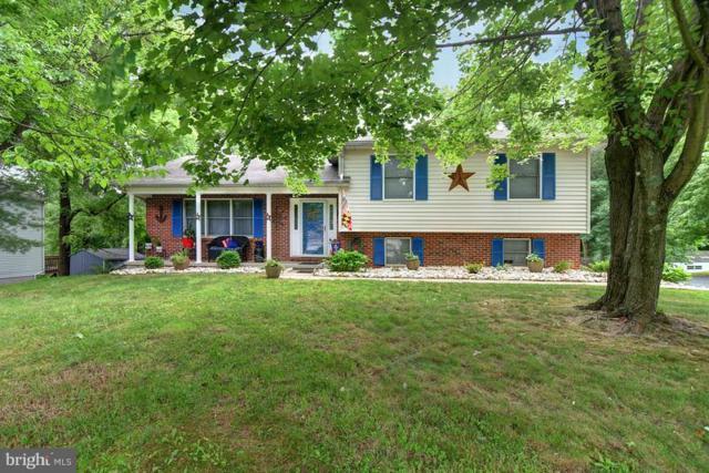 137 White Pine Circle, ELKTON, MD 21921 (#1001832810) :: Colgan Real Estate
