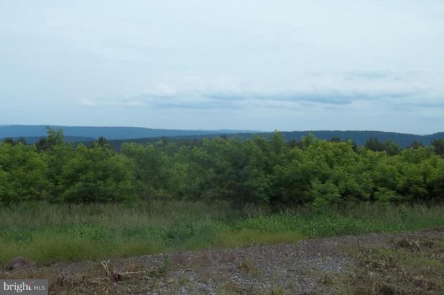 Bluffs Creek View, ROMNEY, WV 26757 (#1001837622) :: Dart Homes
