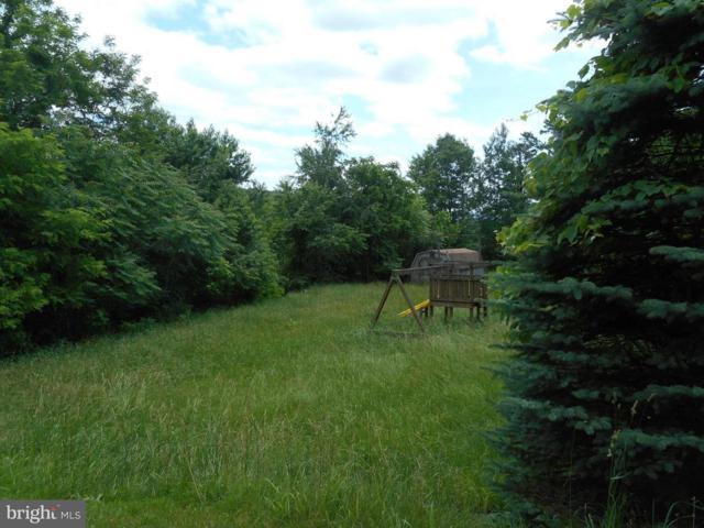 Taylor Drive, ROMNEY, WV 26757 (#1001839060) :: Colgan Real Estate