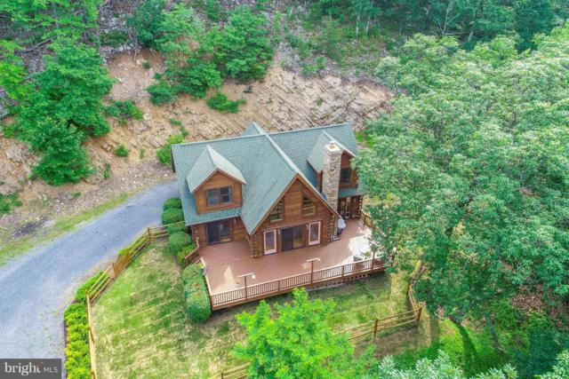 126 Trails End Drive, STAR TANNERY, VA 22654 (#1001840188) :: Colgan Real Estate