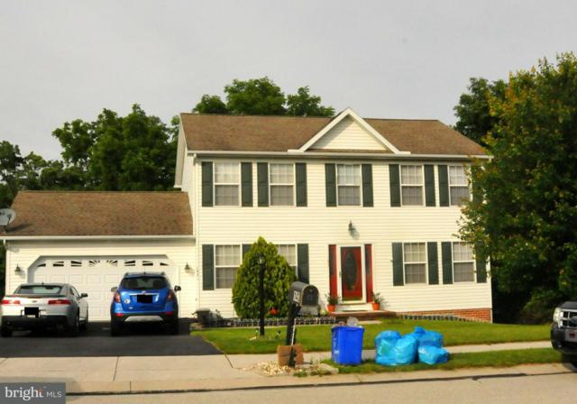 143 Timber Lane, HANOVER, PA 17331 (#1001844920) :: Teampete Realty Services, Inc