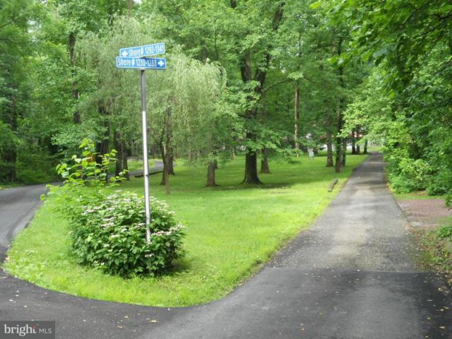 1250 Shore Lane, WRIGHTSVILLE, PA 17368 (#1001845584) :: The Jim Powers Team