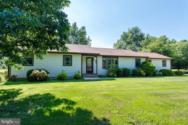902 Kent Point Road, STEVENSVILLE, MD 21666 (#1001865160) :: Colgan Real Estate