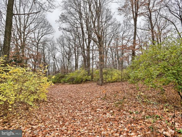 Lot 5 Black Diamond Road, EPHRATA, PA 17522 (#1001868720) :: Younger Realty Group