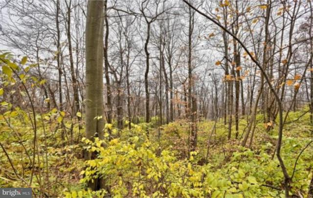 Lot 2 Black Diamond Road, EPHRATA, PA 17522 (#1001868734) :: Younger Realty Group