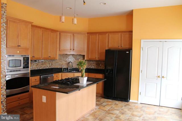 21874 Schenley Terrace, ASHBURN, VA 20148 (#1001868744) :: Labrador Real Estate Team