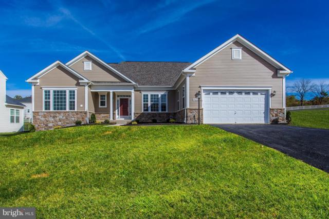 Bridgewater Drive- Poplar, STEPHENS CITY, VA 22655 (#1001869644) :: Colgan Real Estate