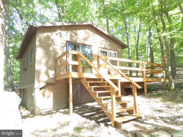 511 Mountain Lion Lane, AUGUSTA, WV 26704 (#1001871874) :: TVRG Homes