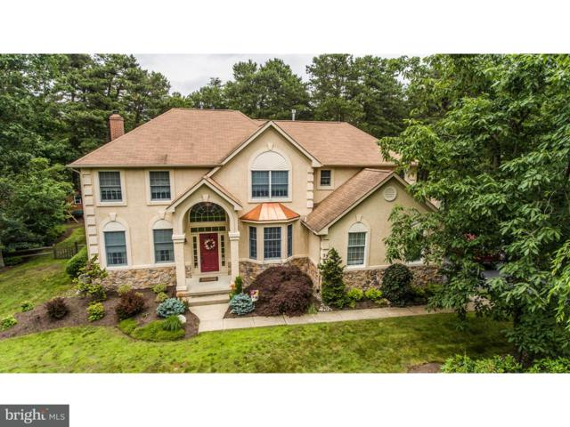 53 John Singer Sargent Way, EVESHAM, NJ 08053 (#1001874084) :: Colgan Real Estate