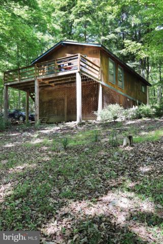 536 Iroquois Trail, BERKELEY SPRINGS, WV 25411 (#1001881772) :: Colgan Real Estate