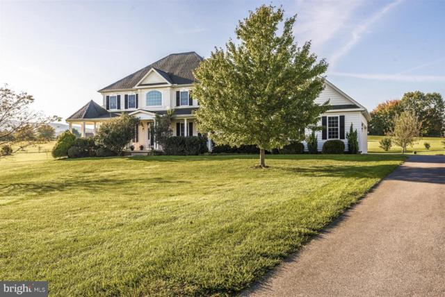20111 W Stone Court, KEEDYSVILLE, MD 21756 (#1001882326) :: Colgan Real Estate