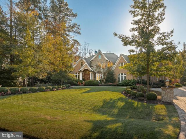 16864 Black Marlin Circle, LEWES, DE 19958 (#1001890696) :: The Windrow Group