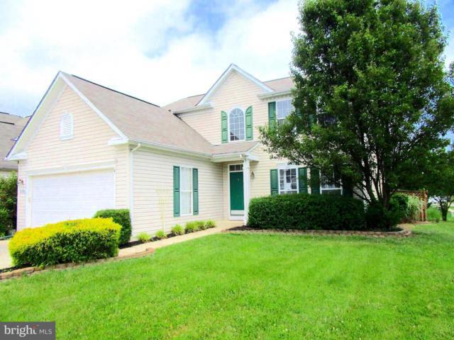225 Creeks End Lane, STEVENSVILLE, MD 21666 (#1001891120) :: Colgan Real Estate