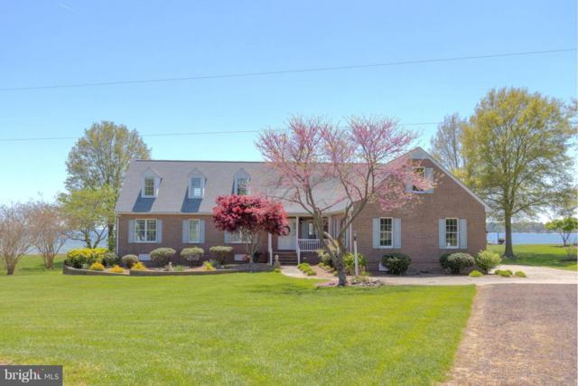 34 Riverside Lane, REEDVILLE, VA 22539 (#1001892908) :: Colgan Real Estate