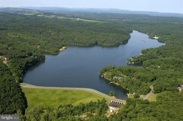 628 Lakeview Drive, CROSS JUNCTION, VA 22625 (#1001900504) :: Green Tree Realty