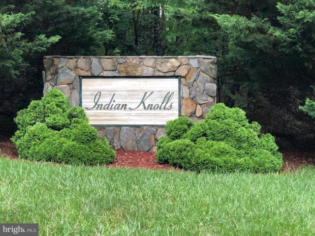 Trail Of Faith Court, LOCUST GROVE, VA 22508 (#1001903422) :: Colgan Real Estate
