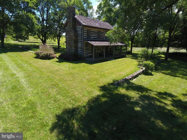 10562 Josiah Adams Place, DELAPLANE, VA 20144 (#1001903654) :: Colgan Real Estate