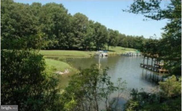 86 Bernie Court, MINERAL, VA 23117 (#1001907792) :: ExecuHome Realty