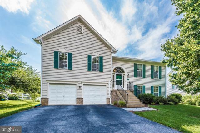 1036 Dulaney Mill Drive, FREDERICK, MD 21702 (#1001908482) :: AJ Team Realty