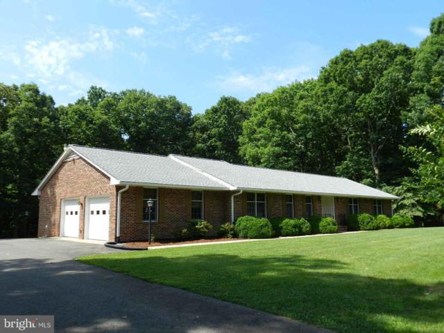 18133 Harding Drive, BOWLING GREEN, VA 22427 (#1001909158) :: Colgan Real Estate