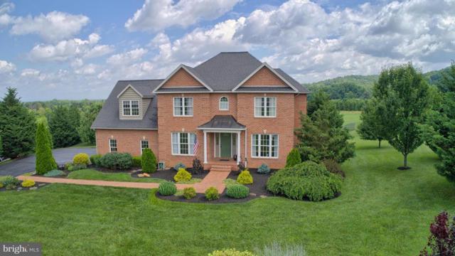 22208 Troy Lane, HAGERSTOWN, MD 21742 (#1001910676) :: Colgan Real Estate