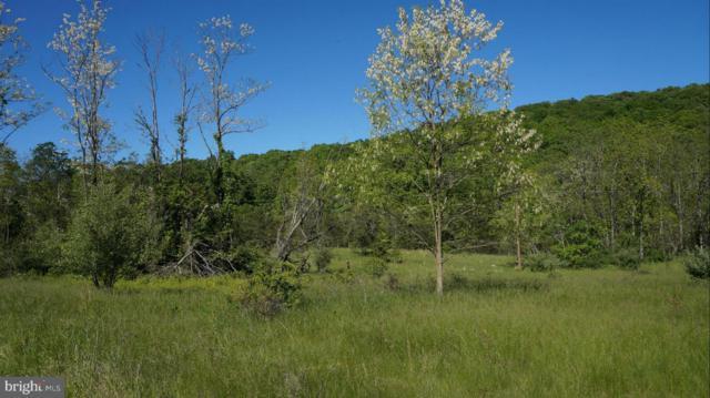 Rock Gap Road, BERKELEY SPRINGS, WV 25411 (#1001914416) :: Great Falls Great Homes