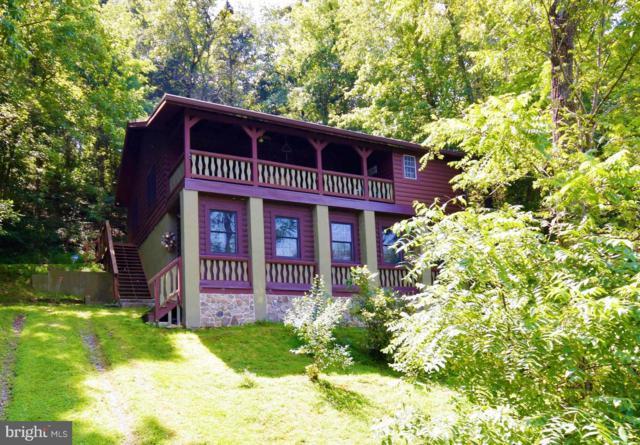 136 Bumgardners Ford Road, RILEYVILLE, VA 22650 (#1001914966) :: Colgan Real Estate