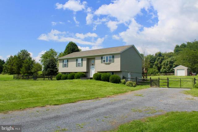 319 Hollida Lane, MARTINSBURG, WV 25404 (#1001918442) :: Colgan Real Estate