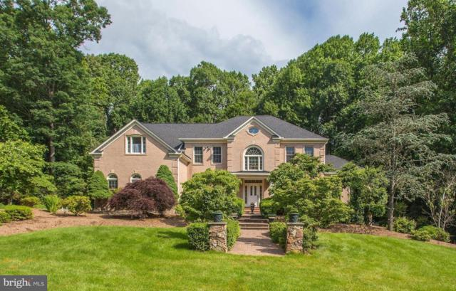 12004 Bennett Farms Court, OAK HILL, VA 20171 (#1001918582) :: Remax Preferred | Scott Kompa Group
