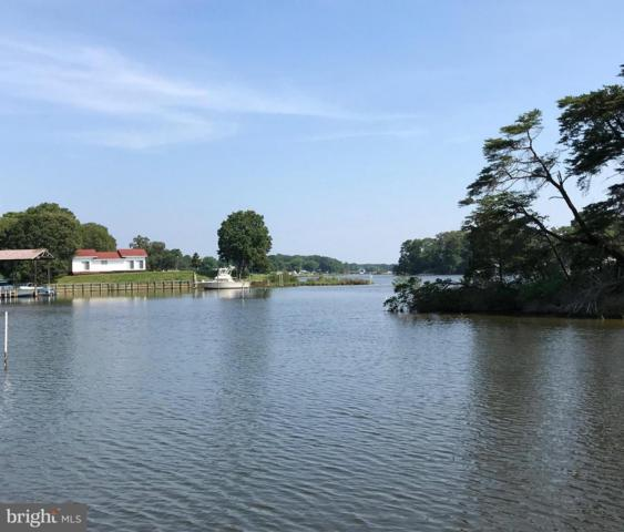 Harbor Lot 62B Drive, REEDVILLE, VA 22539 (#1001923862) :: The MD Home Team