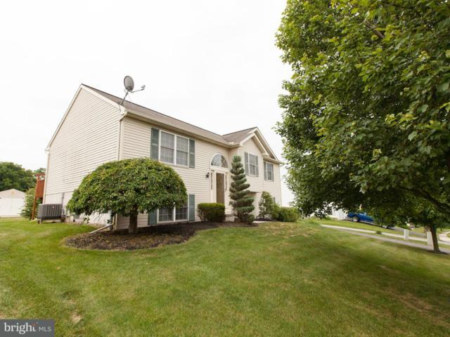 663 Mallard Drive, MANHEIM, PA 17545 (#1001924138) :: Benchmark Real Estate Team of KW Keystone Realty