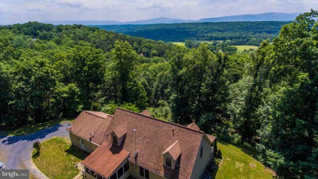 247 Lower Valley Road, STRASBURG, VA 22657 (#1001927656) :: Colgan Real Estate