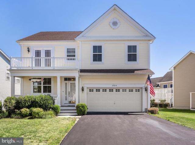 37014 Owl Drive, SELBYVILLE, DE 19975 (#1001930460) :: The Windrow Group