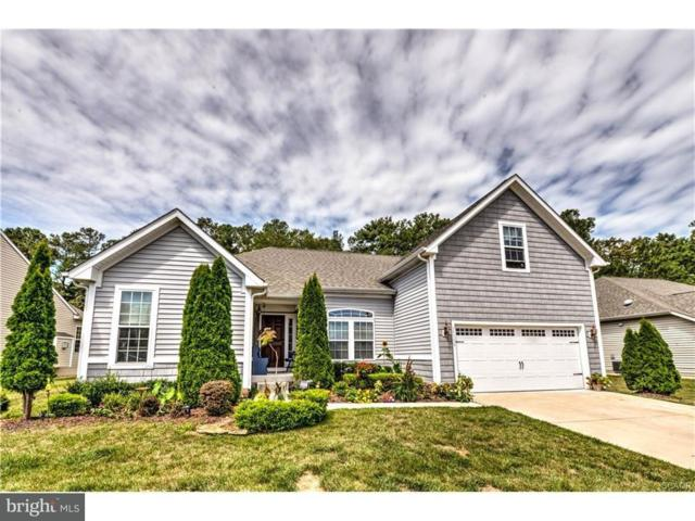 33598 Herring View Drive, LEWES, DE 19958 (#1001932472) :: The Rhonda Frick Team