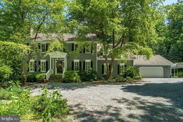 20631 Blueridge Mountain Road SW, PARIS, VA 20130 (#1001936250) :: Colgan Real Estate