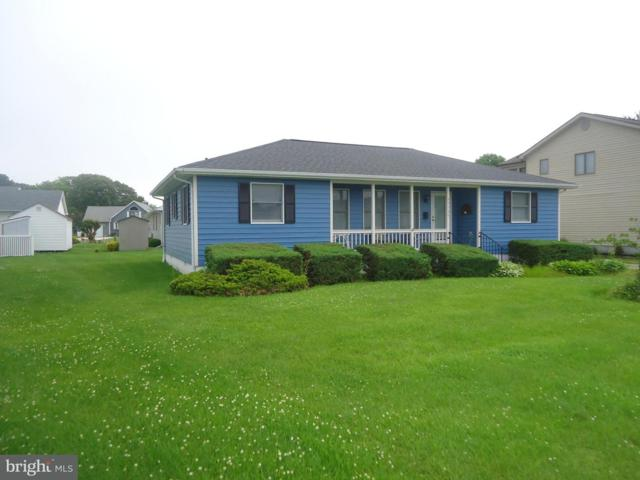 37735 E Pond Circle, SELBYVILLE, DE 19975 (#1001943936) :: The Windrow Group