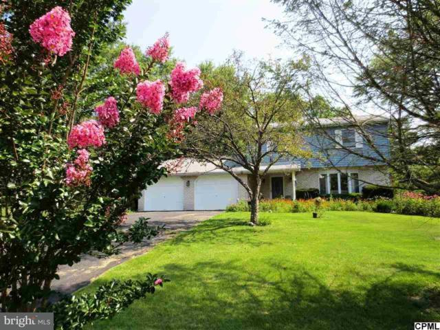 26 Pinetree Drive, DUNCANNON, PA 17020 (#1001944340) :: Colgan Real Estate
