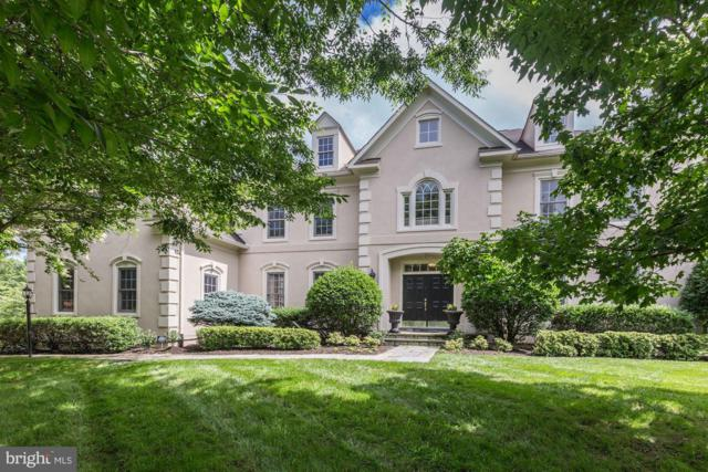 18572 Seminole Court, LEESBURG, VA 20176 (#1001949786) :: Circadian Realty Group