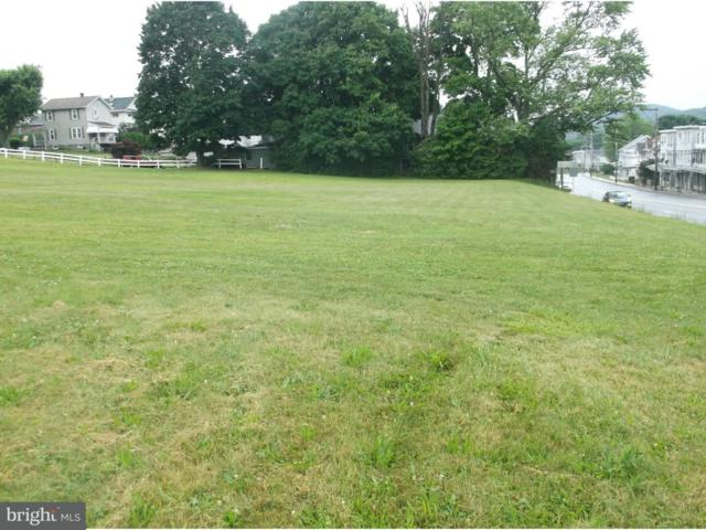 00 Route 61, SCHUYLKILL HAVEN, PA 17972 (#1001955162) :: The Craig Hartranft Team, Berkshire Hathaway Homesale Realty
