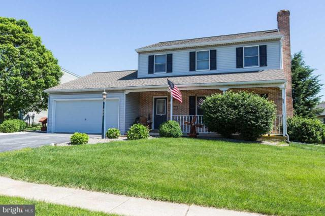 225 Stoever Drive, NEW HOLLAND, PA 17557 (#1001955606) :: Teampete Realty Services, Inc