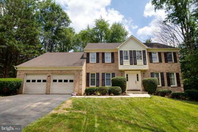 5213 Flattail Court, COLUMBIA, MD 21044 (#1001956256) :: Colgan Real Estate