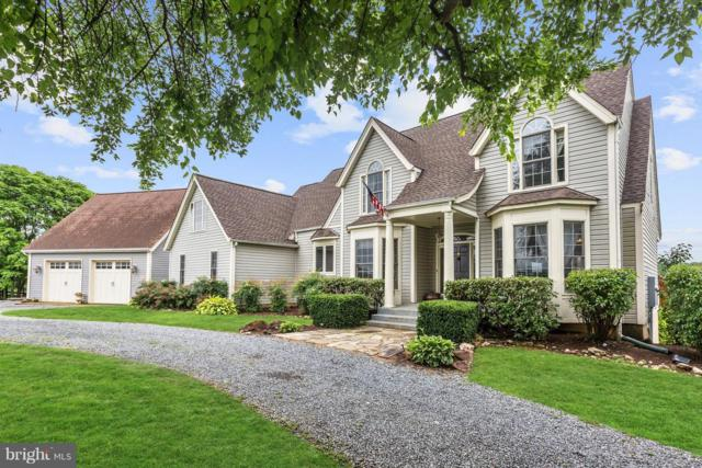9393 Briar Lane, DELAPLANE, VA 20144 (#1001960462) :: Colgan Real Estate