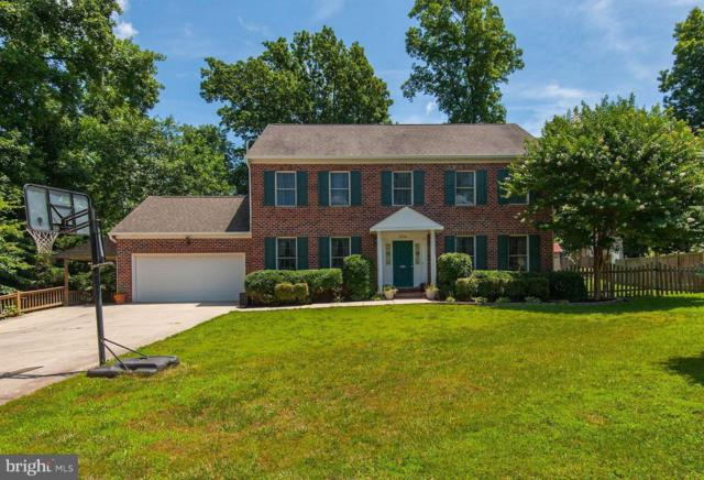 20316 Broad Run Drive, STERLING, VA 20165 (#1001964798) :: Remax Preferred | Scott Kompa Group