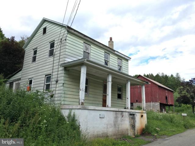 107 Lumber Lane, NEW RINGGOLD, PA 17960 (#1001971344) :: Remax Preferred | Scott Kompa Group