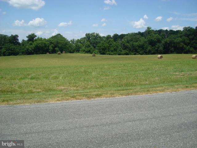 5920 Crescent Point Drive, ORANGE, VA 22960 (#1001972432) :: Remax Preferred   Scott Kompa Group