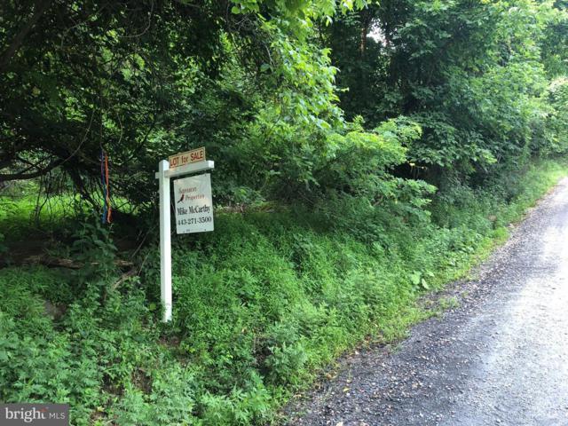Khyber Pass Road, LINDEN, VA 22642 (#1001974318) :: Remax Preferred | Scott Kompa Group