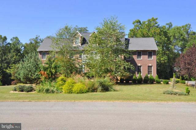 391 Chesapeake Lane, HEDGESVILLE, WV 25427 (#1001977828) :: Colgan Real Estate