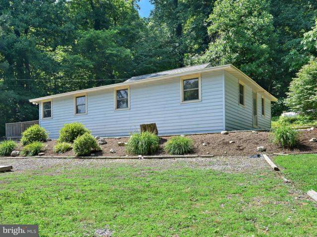 125 Murphys Hollow Lane, WRIGHTSVILLE, PA 17368 (#1001980414) :: CENTURY 21 Core Partners